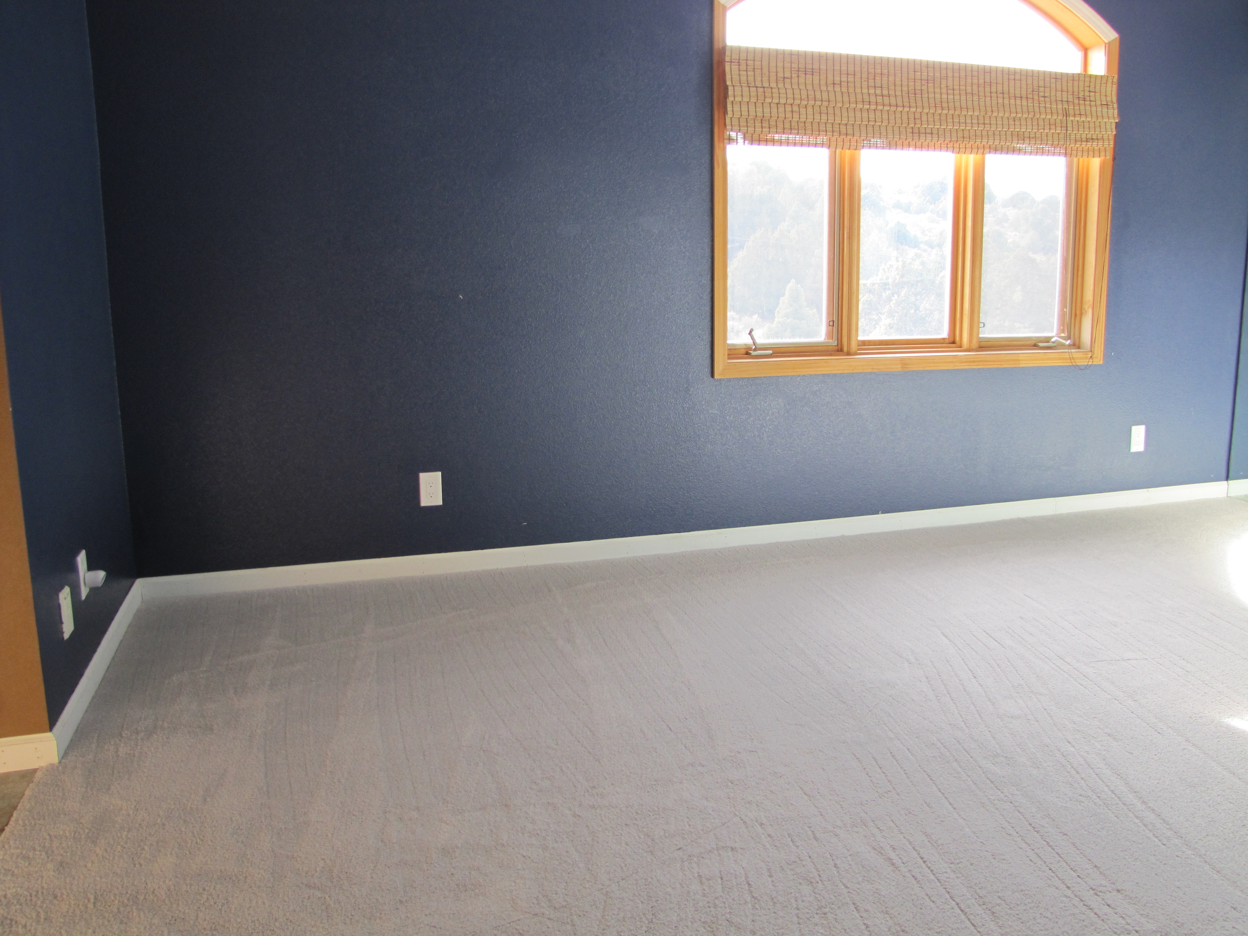 New Carpet! And Paint! | Jackalope Hollow Ranch